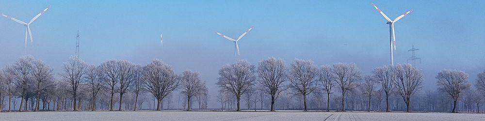 2021.01.winter.jpg